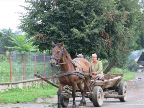 Travel to Romania Arbore Monastary with Glen & Leslie