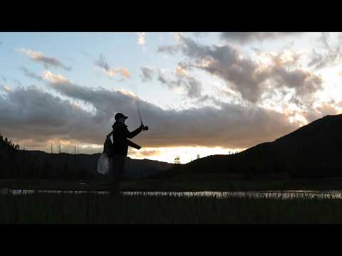 Fly Fishing Yellowstone And The Grand Tetons!