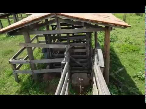 Fazenda a venda - 300 hectares - Baianópolis BA