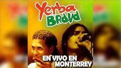Yerba Brava - Tumberos - Pibe Cantina (En Vivo En Monterrey,Mexico)