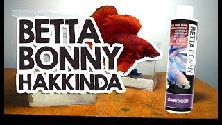 Betta Bonny Hakkında -  İşe yarar mı Gerek var mı ?