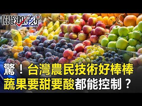 驚!台灣農民技術好棒棒 蔬菜、水果要長要短要甜要酸都能控制!? 關鍵時刻20190228-3 林佳新