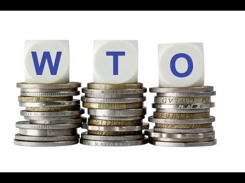 Украина понесет миллиардные убытки из-за проигранных споров с Россией в ВТО