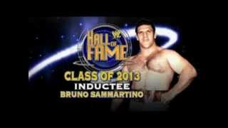 "WWE Hall Of Fame 2013 Theme Song ""Hall Of Fame   The Script feat william"""