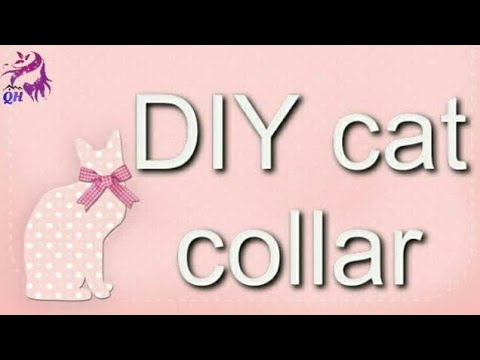 DIY cat collar tutorial || How to make cat collar at home || Queen's home