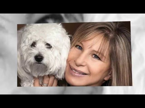"BARBRA STREISAND ""SMILE"""