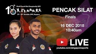 (A2) Nguyen Van Tri 🇻🇳 vs 🇸🇬 Sheikh Firdous | 18th World Pencak Silat Championship 2018