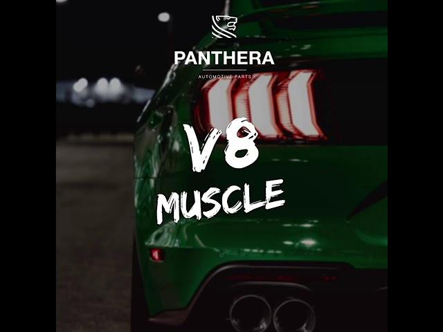 PANTHERA LEO Active Sound 4.0 - V8 Muscle-Car