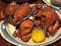 РОБЕРТ вывел МЕНЯ в ЛЮДИ High Tide Harry S Seafood ФлоридаЯлта США 27 11 2017 mp3