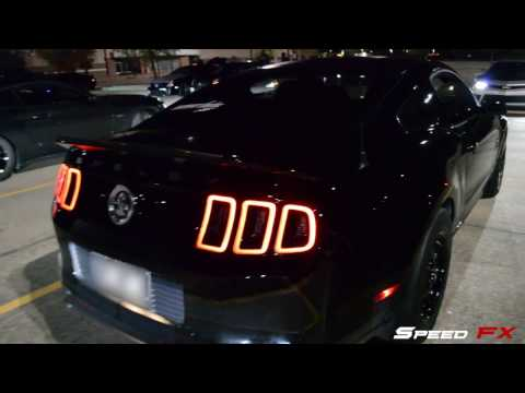 800HP GT500 Calls Out HellCats?!
