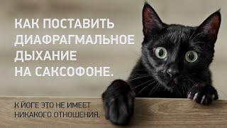 Как поставить диафрагмальное дыхание