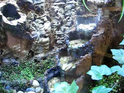 26 Gallon Bowfront Terrarium Waterfall Youtube