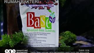 Base One Rumah Bakteri Untuk Aquascape