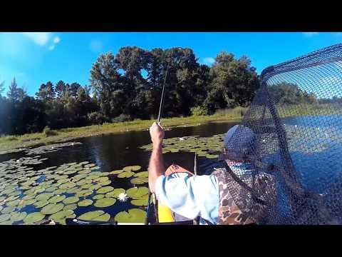 Kayak Fishing Lake Hawkins 6 23 16