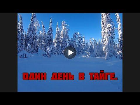 Один день в снежной тайге ( экстримальная езда по тайге на снегоходе )
