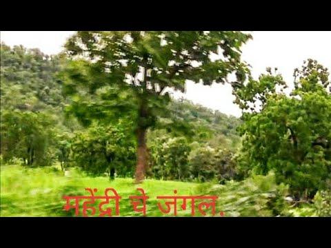 Mahendri Forest to Satnur Jungle Road  by Dr Manohar Khode Amravati