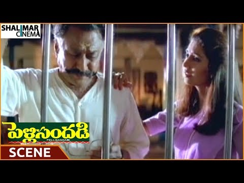 Pelli Sandadi Movie || Sarigama Padanisa Ragam Video Song || Srikanth, Ravali from YouTube · Duration:  4 minutes 42 seconds