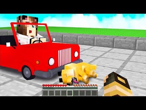 IL MIO CANE È STATO INVESTITO! - Casa di Minecraft #46