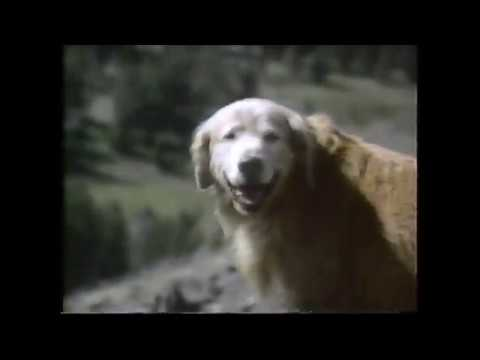 Homeward Bound The Incredible Journey Trailer (1993)