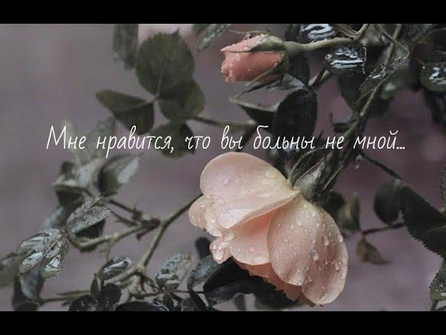 Изображение предпросмотра прочтения – ВарвараАстафьева читает произведение «Мне нравится, что Вы больны не мной...» М.И.Цветаевой
