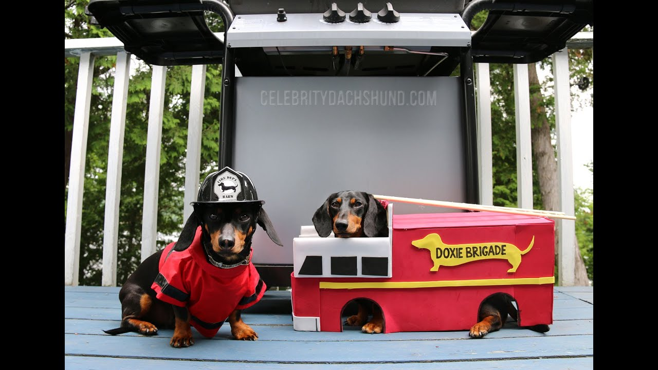 Watch Dogs  Firefighter Costume