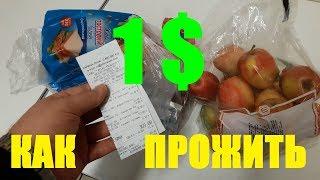 Как Прожить на 1$