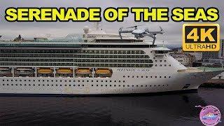 Serenade of the Seas, Tour of the Ship 4K