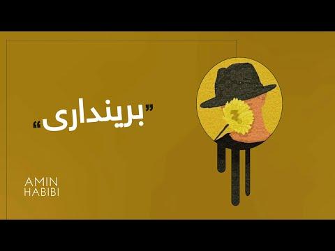 Amin Habibi - Zakhmi \