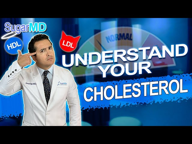 Would High LDL REALLY gives you a heart attack or Is it Bunch of BS?