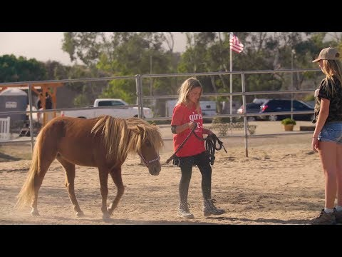 Where Horses Help People.