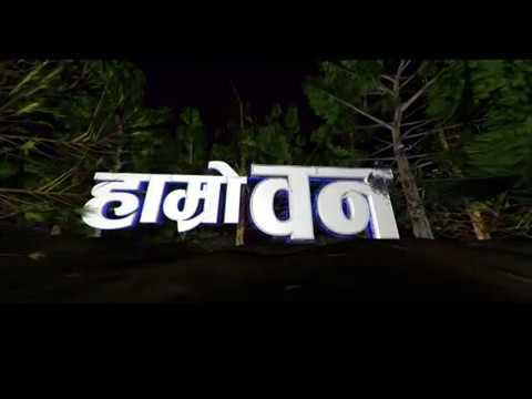 Ramesh Maharjan, Nepal Television Graphics (LOGO PROGRAM ID Making by Ramesh Maharjan)_1358u