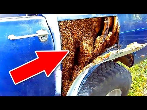 During repair work of a vehicle a SHOCKING DISCOVERY