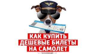 КАК КУПИТЬ ДЕШЕВЫЕ БИЛЕТЫ НА САМОЛЕТ и какие БЮДЖЕТНЫЕ авиакомпании летают из России.(Как купить дешевый билет на самолет, или где искать дешевые авиабилеты, это важные вопросы при планировании..., 2015-06-02T10:19:16.000Z)