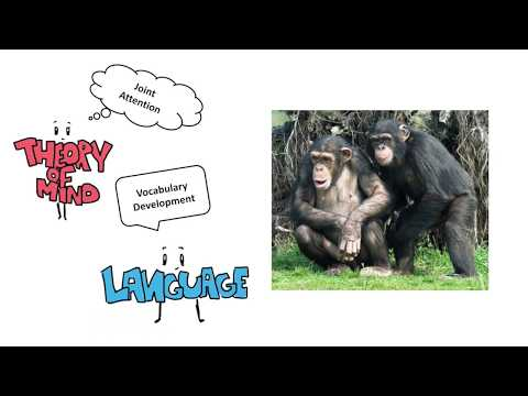 Language and Theory of Mind