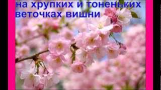 Цветущая САКУРА(Не упусти своё счастье-жизнь слишком коротка!!!, 2013-03-04T18:19:46.000Z)