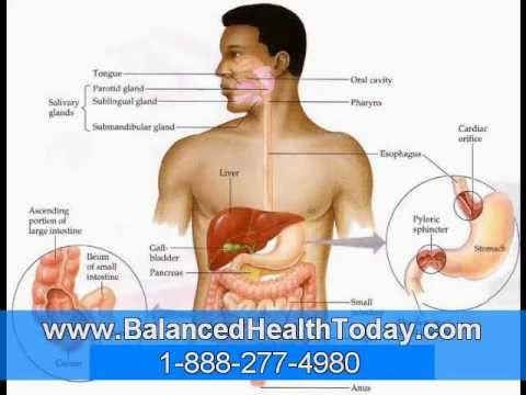 Liver And Gall Bladder Cleanse