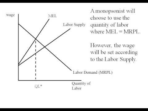 Econ - Monopsony Graph