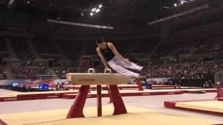 Max WHITLOCK Pommel GOLD - 2016 Apparatus Finals