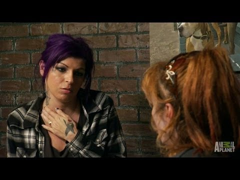 That Time Tania Stepped Up as 'Tia with Purple Hair' | Pit Bulls and Parolees