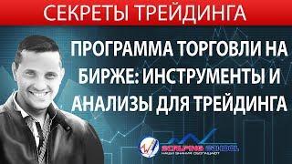 Программа торговли на бирже: инструменты и анализы для трейдинга [Ерин Роман]