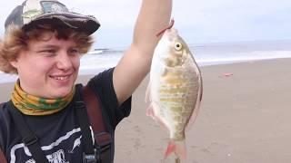 Oregon Coast Surf Fishing Youtube Collaboration (Surf Perch)