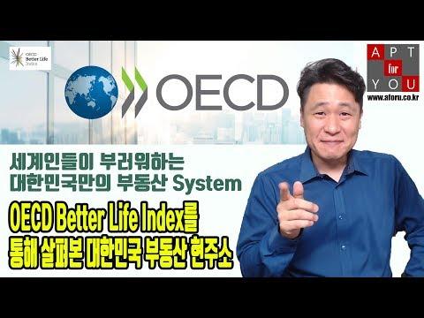 OECD Better Life Index를 통해 살펴본 대한민국 부동산 현주소