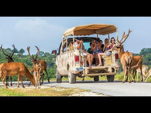 ten top visiting places of San Antonio Texas