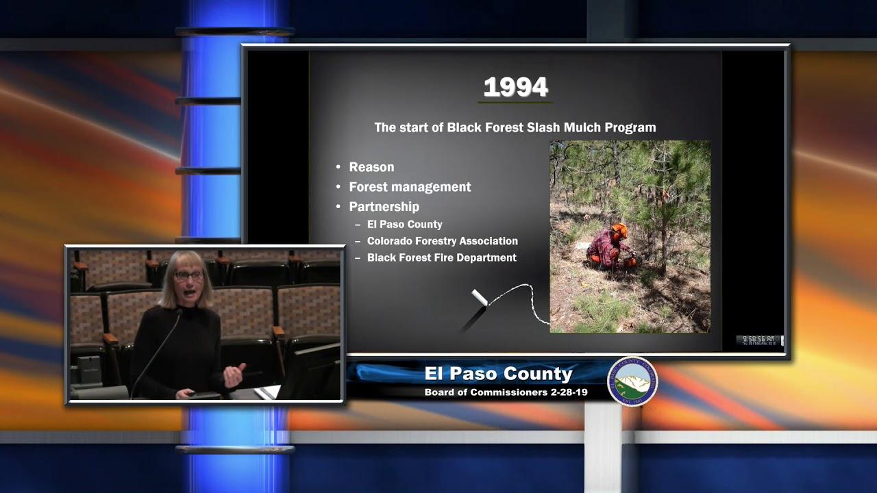 Black Forest Slash Mulch Program Update Youtube