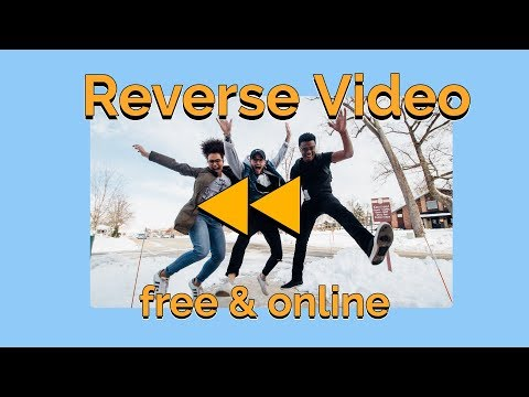 How To Reverse A Video: Free & Online