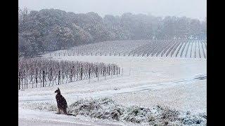 GSM Update 8/18/18 - Australia's Record Winter - Unprecedented Flooding - Japan Earliest Snow