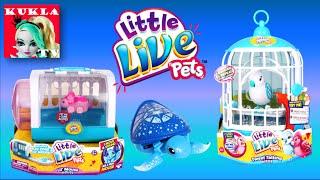 VLOG Магазин игрушек  LITTLE LIVE PETS! Интерактивные игрушки Литл Лайв Петс