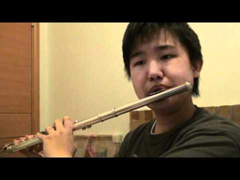 A Whole New World  Aladdin  Flute