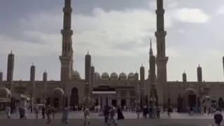Madina Hotels near Haram Latest