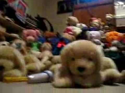 Stuffed Animal Musical